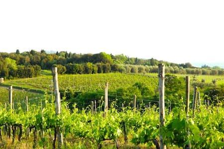 Gorgeous Chianti Views Near Siena & Florence - Villa A Sesta