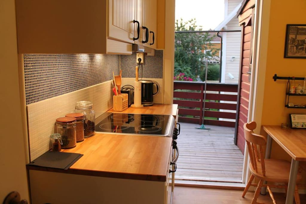 Kitchen out to terrace. Induction oven.