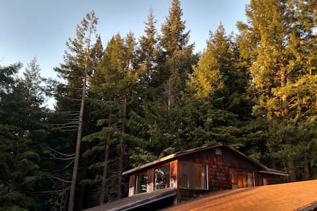 Cozy Cabin 10 Minutes From Town - McKinleyville