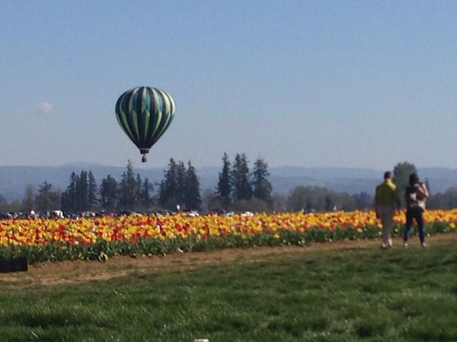 Many local activities and festivals to choose from, the Wooden Shoe Tulip Fest is world famous!