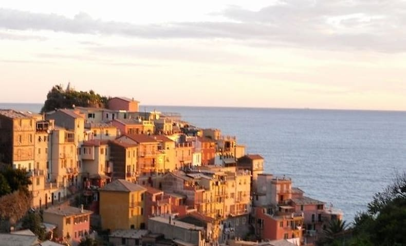 Casa Capellini sea view apartment - Manarola - Flat