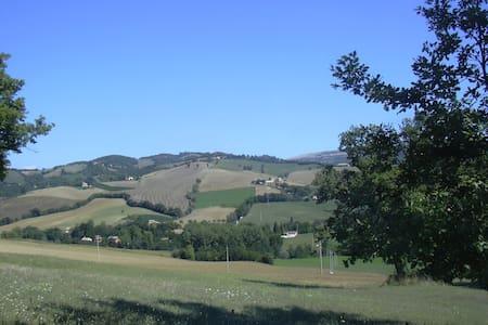 Accogliente bilocale nel verde - Mergnano San Savino