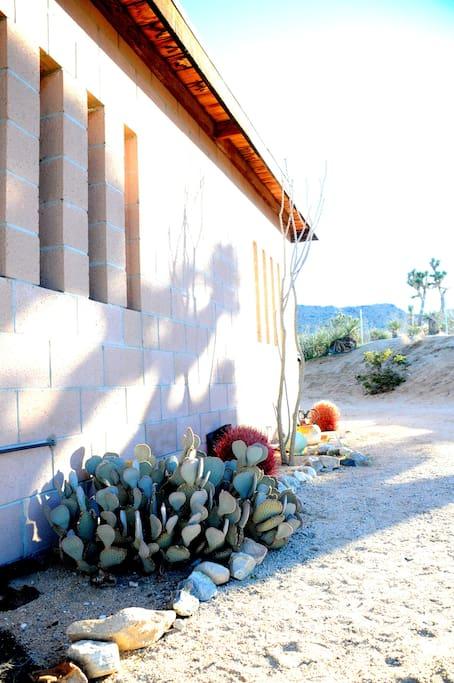Thunderbird Lodge Retreat-Shell