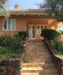 Calistoga Vineyard Getaway - Calistoga - House