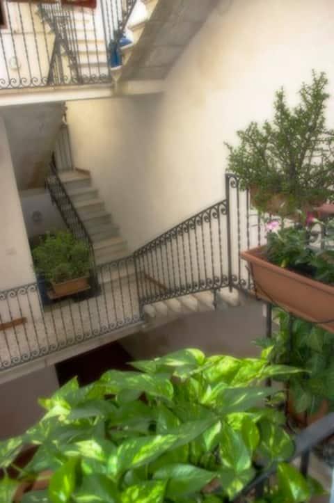 Primo Piano Riccio - Tourist Rental