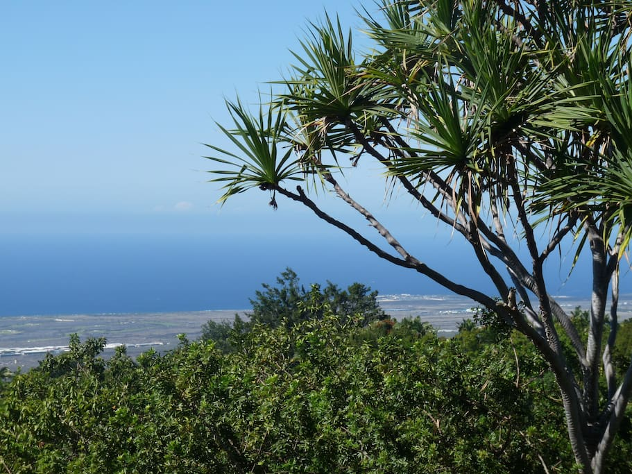 View from our front Lanai