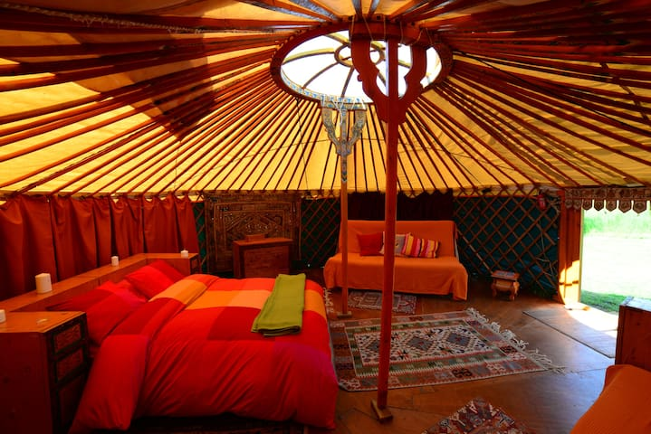 Mongolian Yurt on off-grid ecofarm - Pandenes