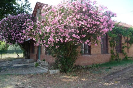 Country house near river (Palencia) - Bed & Breakfast