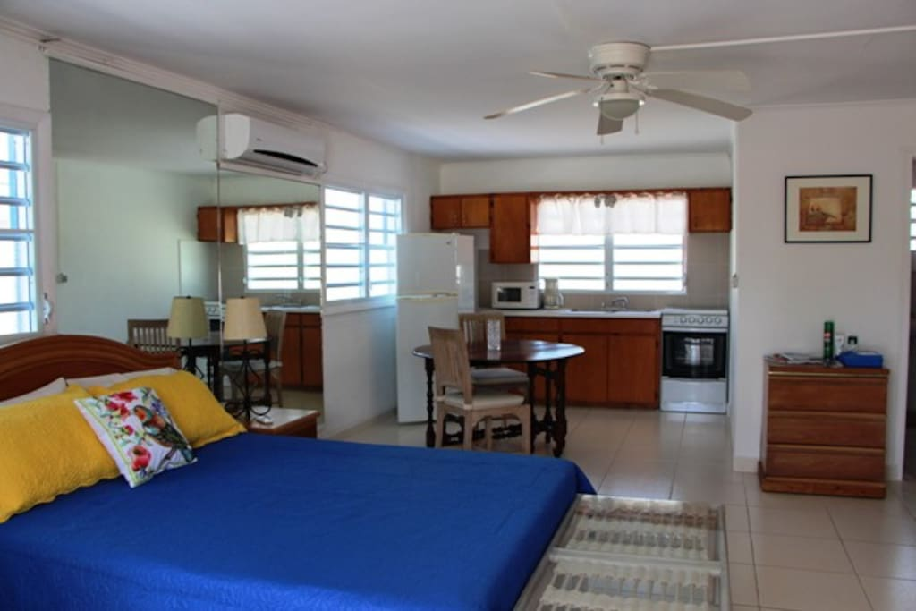 Large studio with dining area and kitchen and air conditioner.