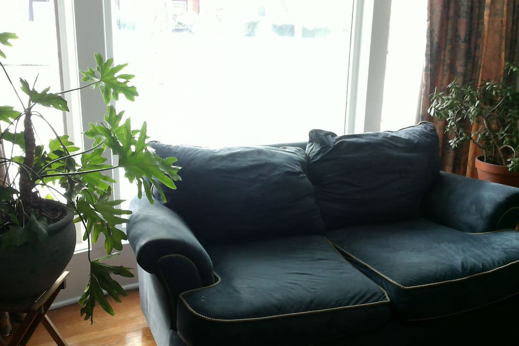 Living room has ample, comfortable seating