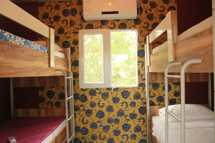 Patara Woody Hostel Rooms Made From Frozen Trucks