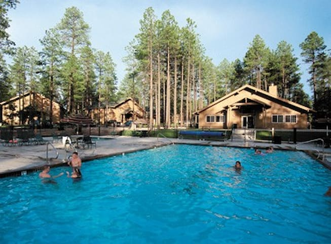 Studio Wyndham Pinetop, AZ - Pinetop-Lakeside - Apartment