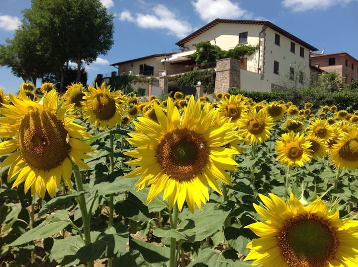Il Girasole a Luxury villette in rural countryside