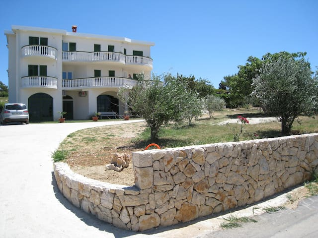 Charming apartment near the beach (A1) - Povljana - Apartment