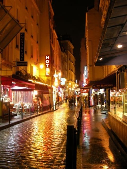 Here's the street.  It's a rainy night, otherwise it would be jammed.  The street is 1800 years old, and the masons who built Notre Dame lived here.  Shayne's is in one of the last buildings on the left.