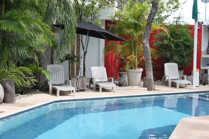 2 br apartment w wonderful pool & mayan greenery - Mérida - Apartment