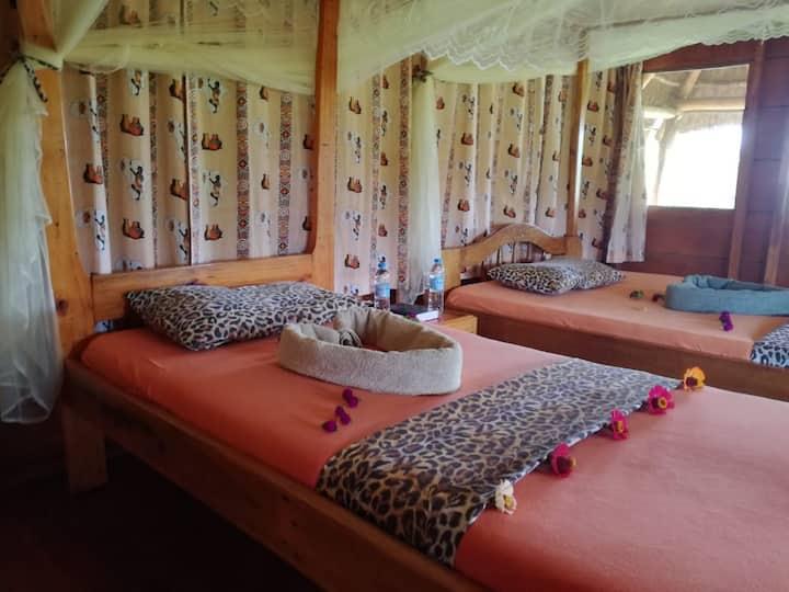 The best kept secret in Uganda-Mama Washindi Lodge