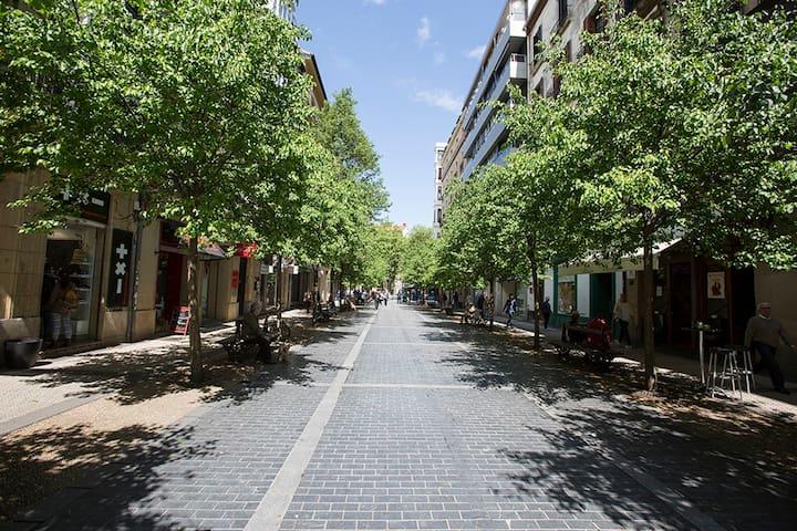 ELKANO:Centro, Playa Concha, WiFi - Donostia - Leilighet