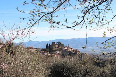 Your Own Fully Self-Catered Tuscan Villa - Montegonzi - Villa
