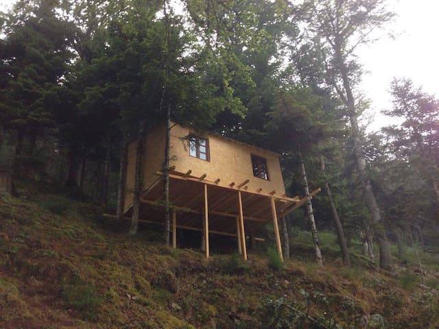 Cabane dans les arbres Ô Paradis Fonts-Hautes - Saint-Pierre-sur-Doux - Kabin