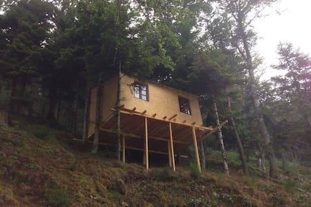 Cabane dans les arbres Ô Paradis Fonts-Hautes - Saint-Pierre-sur-Doux - Cabin