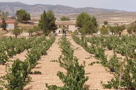 The Olive Tree Country Guest House - Cañada del Trigo - Bed & Breakfast