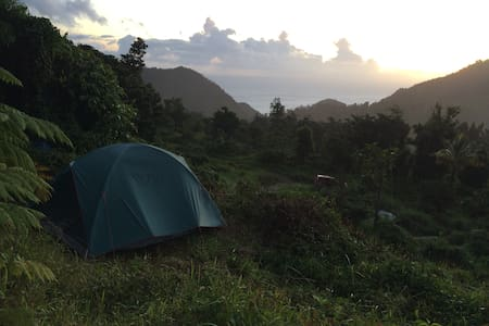 Jungle Permaculture Bring Own TENT + Hostel space