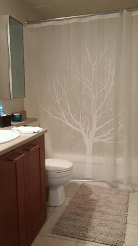 Washroom with shower and bathtub