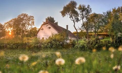 Danube Dreamin, close to Wachau & Danubelake