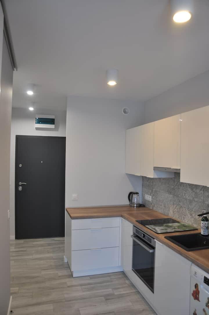 Urokliwy i nowoczesny Apartament Anushka.