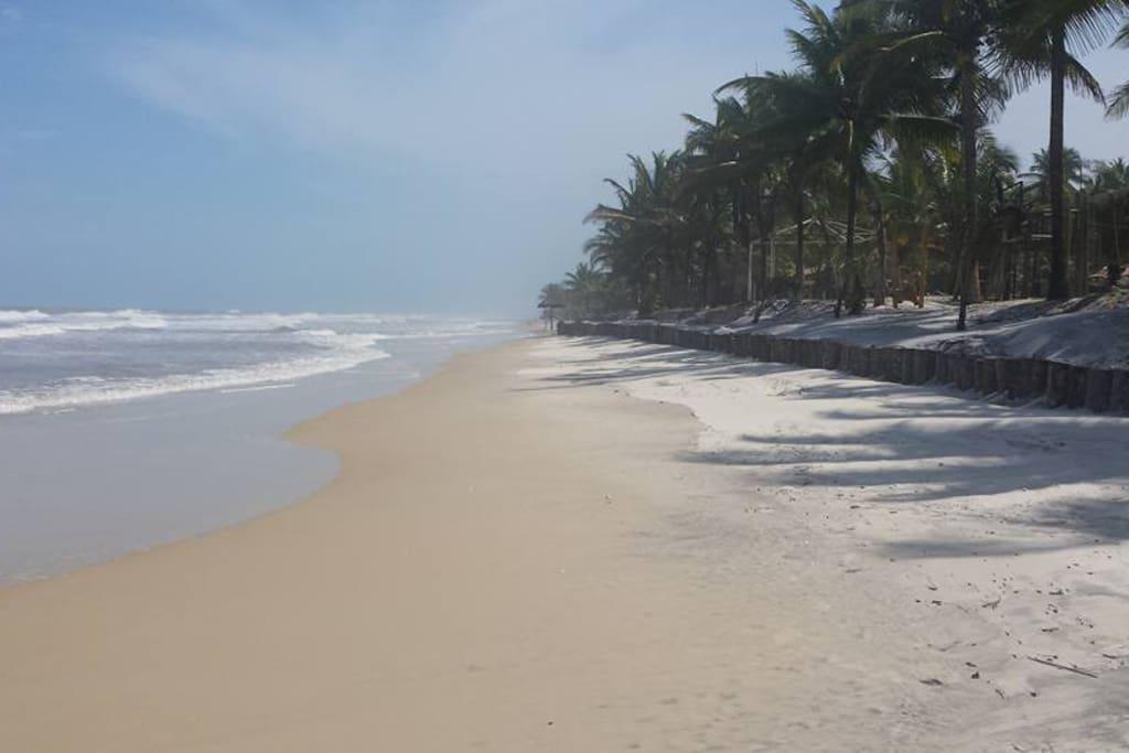 Paradisiacal beaches