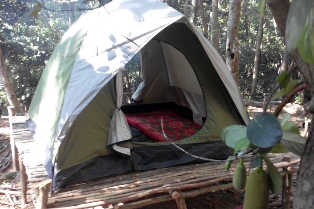 Our interior... Dome tent come with mattress and pillow...