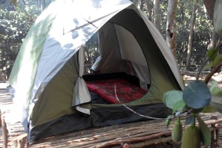 RainForest Camping Pulau Perhentian - Tente