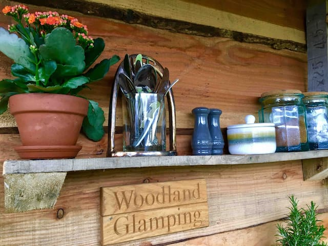 Woodland Glamping Yew Tree Yurt