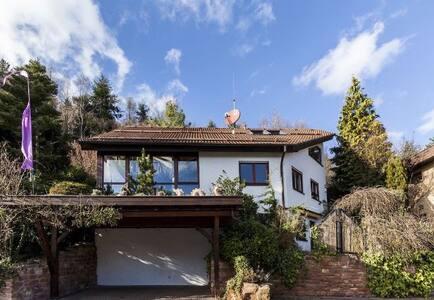 Strahlenburg House - Schriesheim