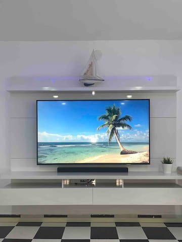 TV unit with Smart TV.  Smartcast programs and NETFLIX Included.