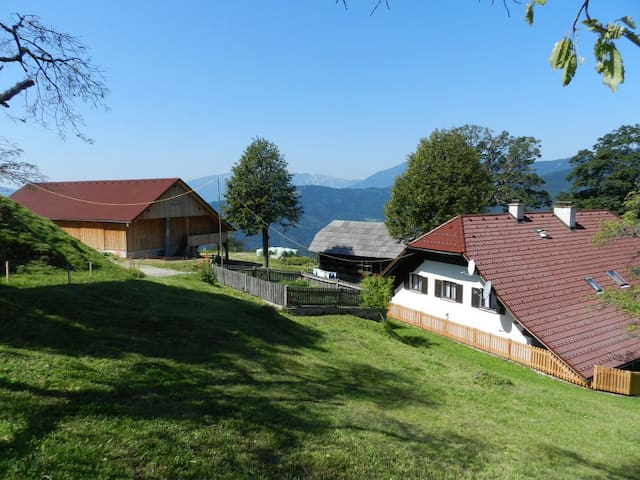 Visočnik Tourism Farm, double room - Ljubno ob Savinji - Bed & Breakfast