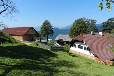 Visočnik Tourism Farm, double room - Ljubno ob Savinji - Aamiaismajoitus