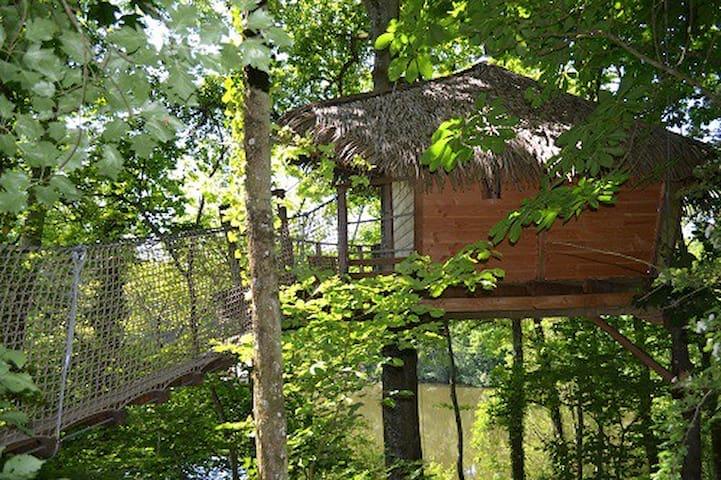 La cabane dans les arbres SHANGHAI