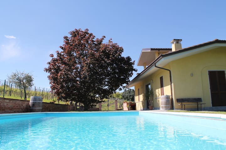 Relax surrounded by UNESCO hills - Guarene - Bed & Breakfast