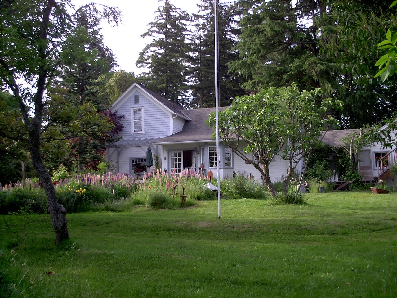 Vashon Farmhouse in June