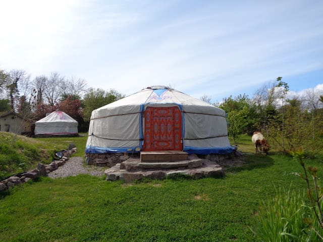 Mongolian Yurt, Eco Sustainable Camping - Whitegate - Rundzelt