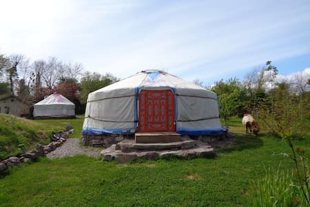 Mongolian Yurt, Eco Sustainable Camping - Whitegate