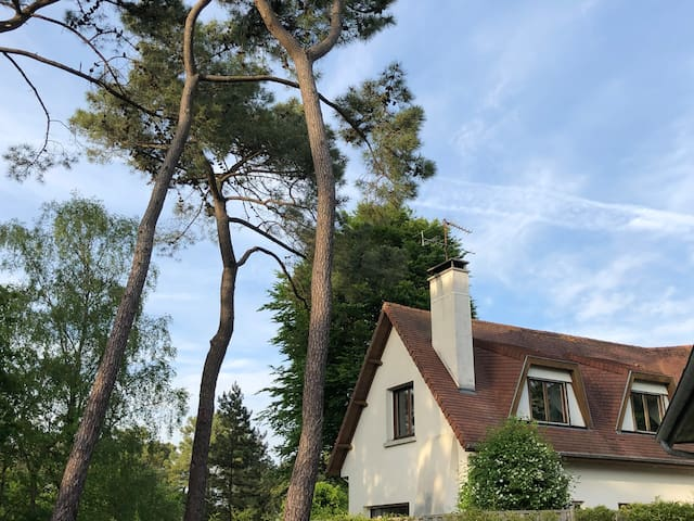 Confortable villa - Le Touquet - Forêt