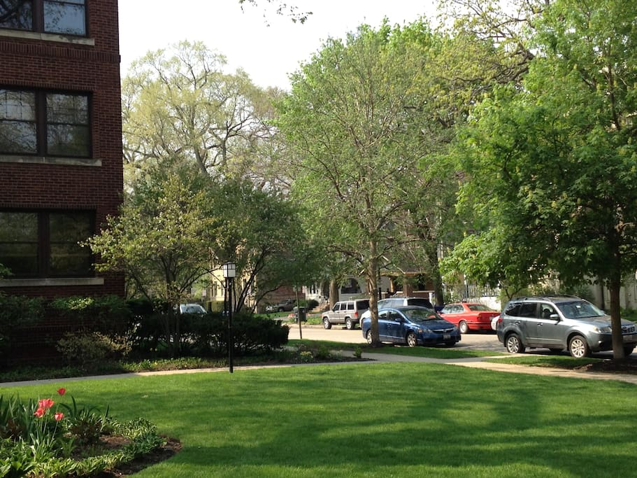The neighborhood from the courtyard