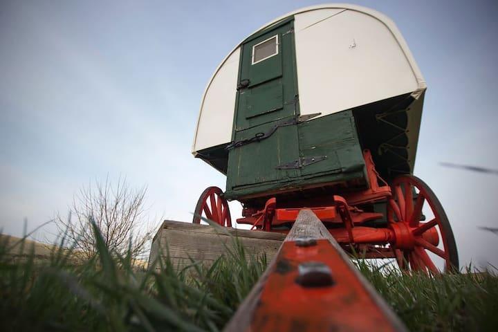 Sheepherders Wagon /CowboyBreakfast