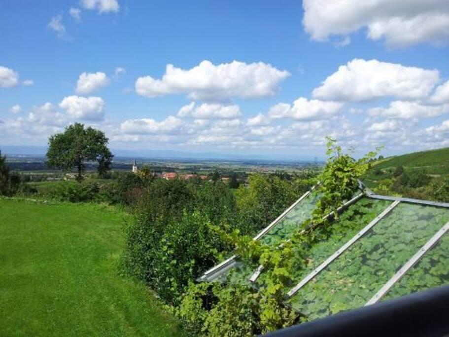Blick von der Terrasse zu den Vogesen. Castellberg