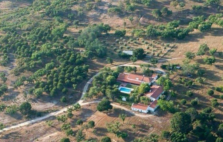 Natureza Paz e Sossego - T3 - Foros do Mocho - Lakás
