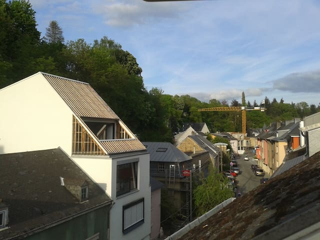 Cosy in green central neighbourhood - Luxembourg - Leilighet