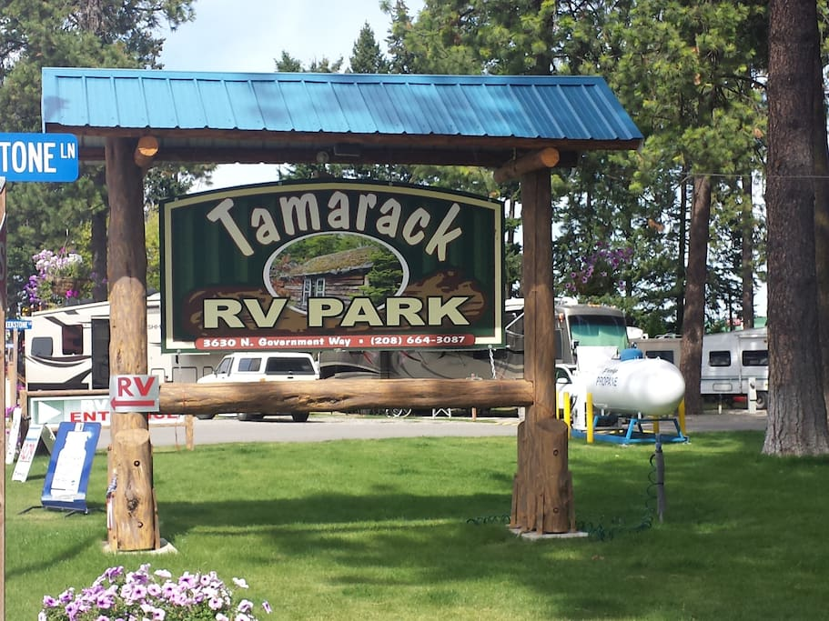 The Lumberjack Cabin is nestled among the tall pines of our RV park.